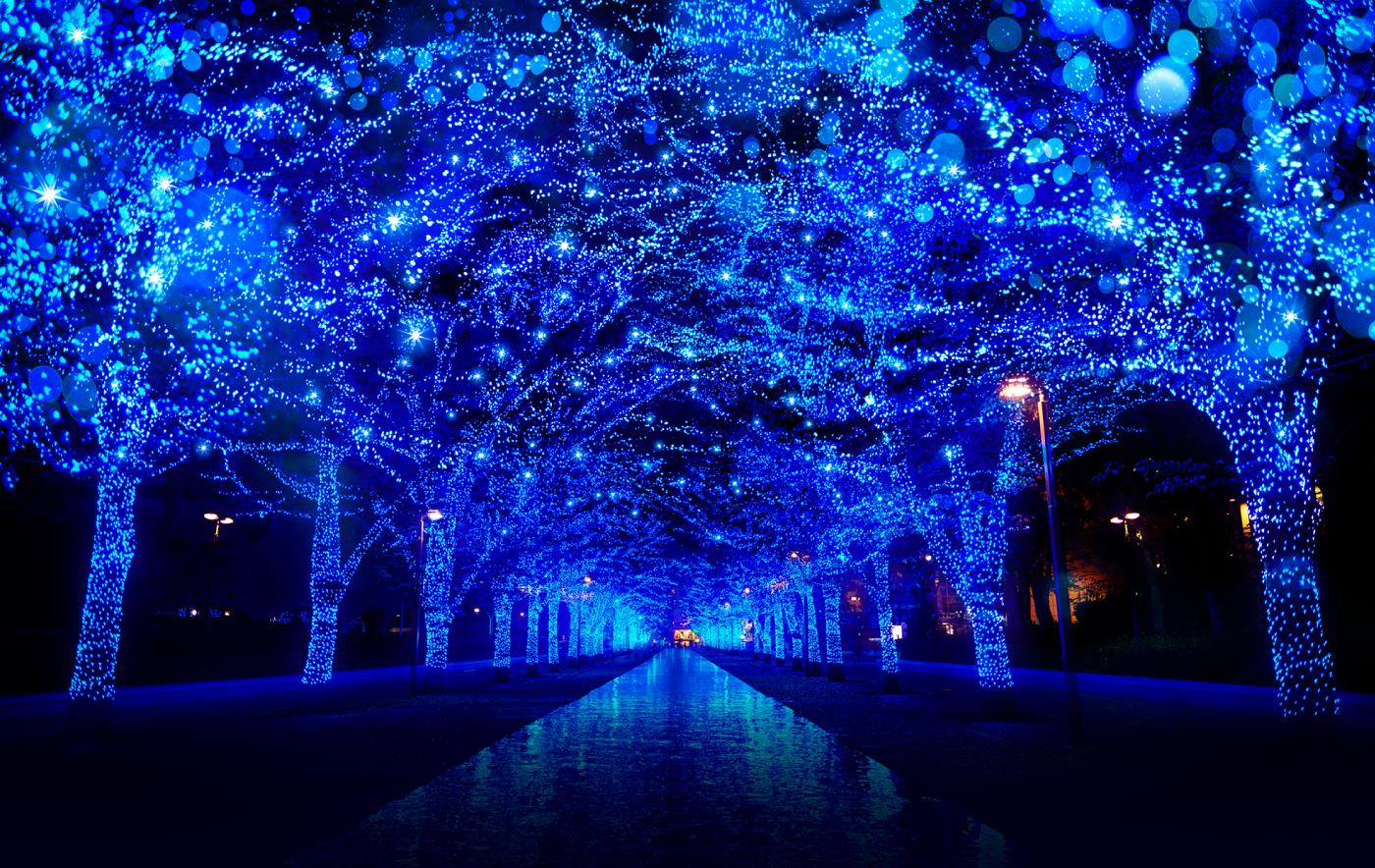 青の洞窟/観光/東京観光/東京観光タクシー/tokyo