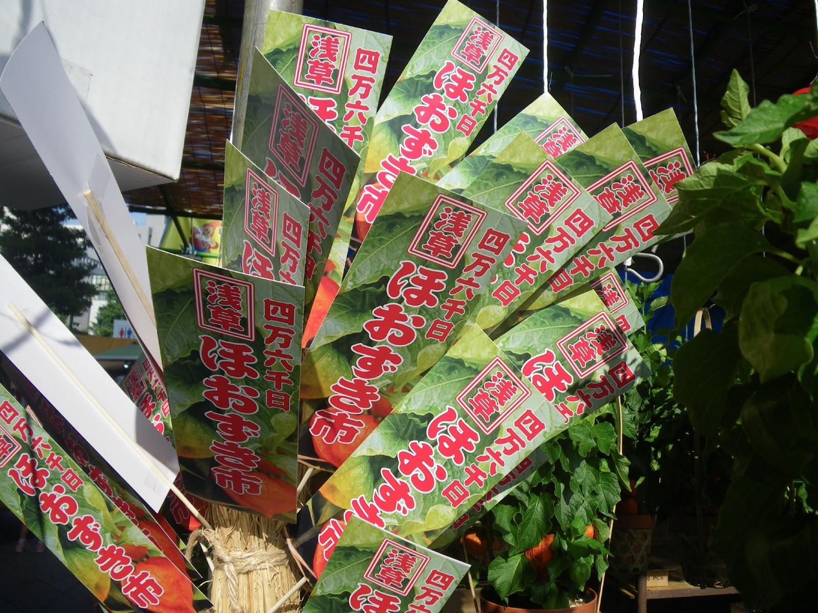 東京観光 浅草ほおずき市 Hozuki market in Asakusa