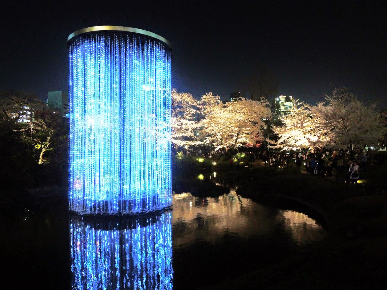 東京観光 毛利庭園の夜桜