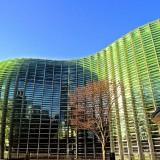 日本が誇る建築家の歴史的・近代的建築を巡る旅【東京観光タクシーモデルコース】