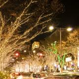 冬のイルミネーション3時間コース【東京観光タクシーモデルコース】